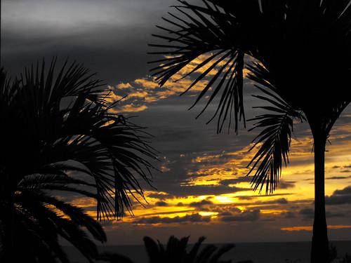 sunset sky palm montserrat hdr