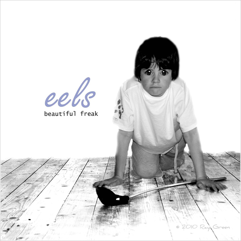 219 Of 365 Eels The Eels Beautiful Freak Album Cover Gr Flickr