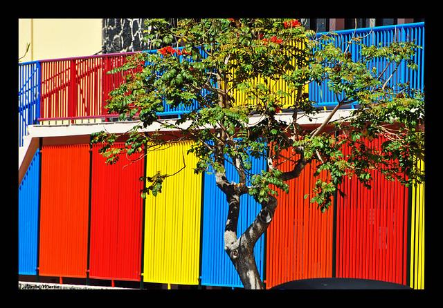 Colores ....