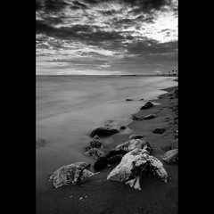 una historia de paisajes / a history of landscapes