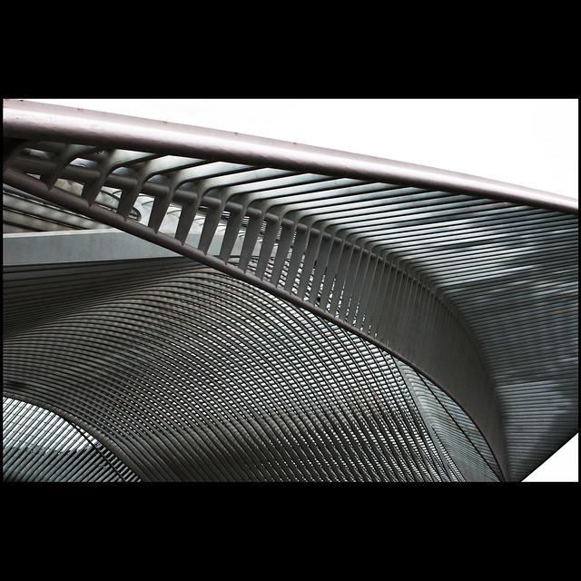Steel fern