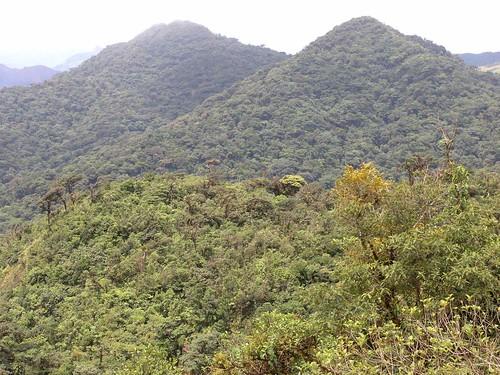 plants mountains latinamerica forest landscapes parks panama centralamerica 2007 américalatina cocle centroamerica coclé gpsapproximate