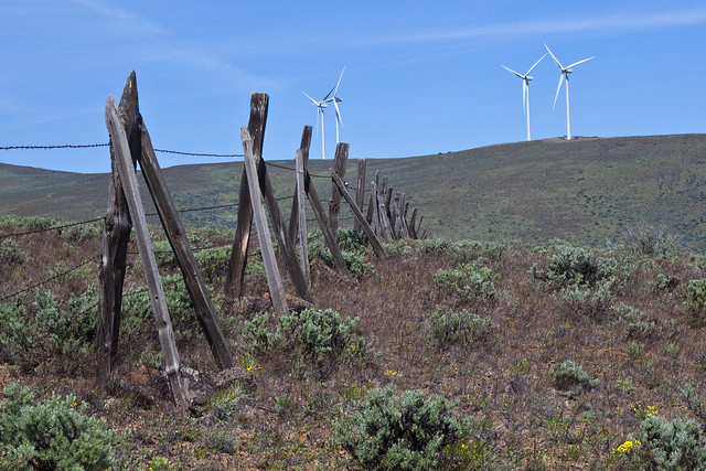 Barbed Wire Fence with Wind Farm