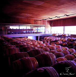 Cono Sur sala de barricas Chile | by Cono Sur Vineyards & Winery