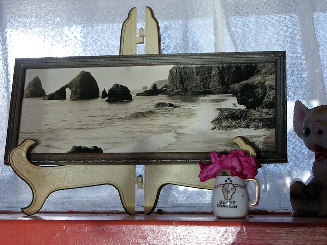 Kitchen Sink Windowsill
