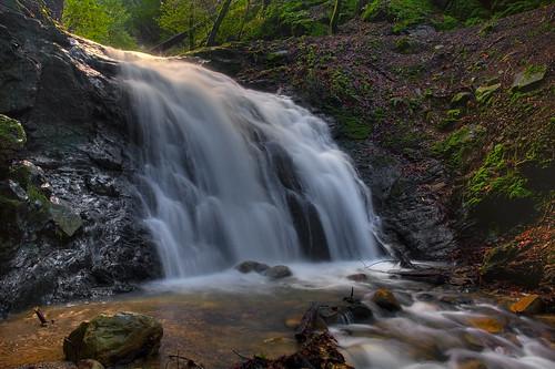 Upper Falls - Uvas Canyon Park