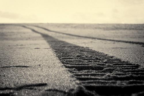 tracks / tintype monochrome