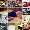 Things I Love Thursday {Rest and Relaxation Edition} by Jade M. Sheldon