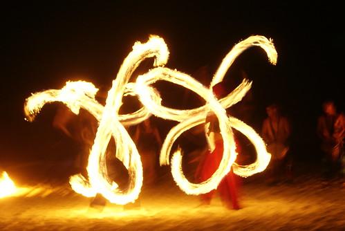 fire butterflies