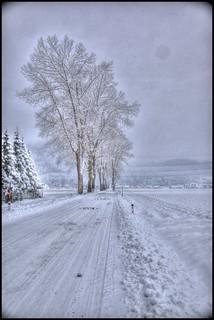 - snow - | by ChrisK4u