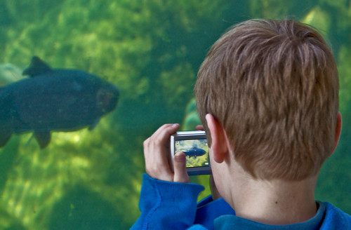 8 Activities To Do With Your Kids in Grand Rapids, MI - John Ball Zoo