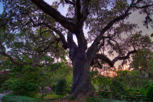 sunset sculpture art sc gardens landscape tripod southcarolina hdr gitzo murrellsinlet brookgreengardens photomatix 3exposure arcatech tokinaatx116prodx gt2531