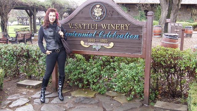 V. Satui Winery