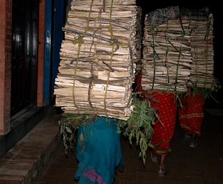 Dressed in bright saris, thin Nepalese women porters carrying large bundles of wood on their back, night, Boudha, Kathmandu, Nepal