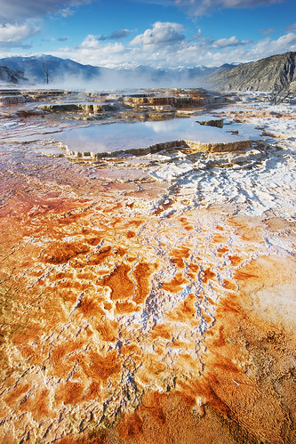 yellowstonenationalpark wyoming travertine hotsprings mammothsprings canarysprings
