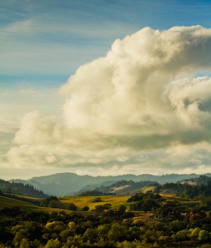 california cloud sun vineyard healdsburg canoneos7d