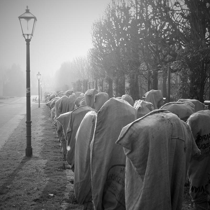 Ghosts in Vienna - Des fantômes à Vienne