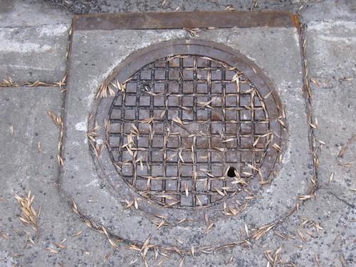 plaque   by Émanu