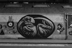 Amsterdam graffiti: dinosaur egg by Roa