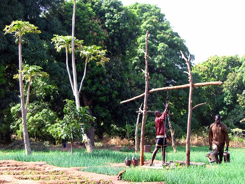 africa nature canon garden landscape powershot burkinafaso afrique