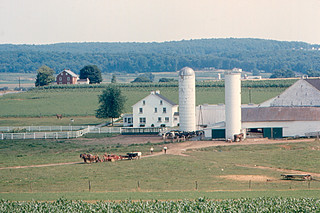 Strasburg - Amish Farm