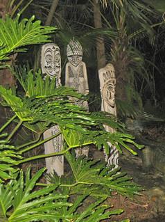 The jungle ride at night