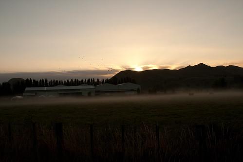 newzealand sun mist sunrise gisborne
