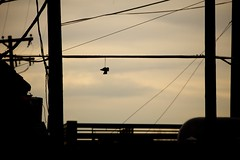 Photograph: Shoes on a wire 3