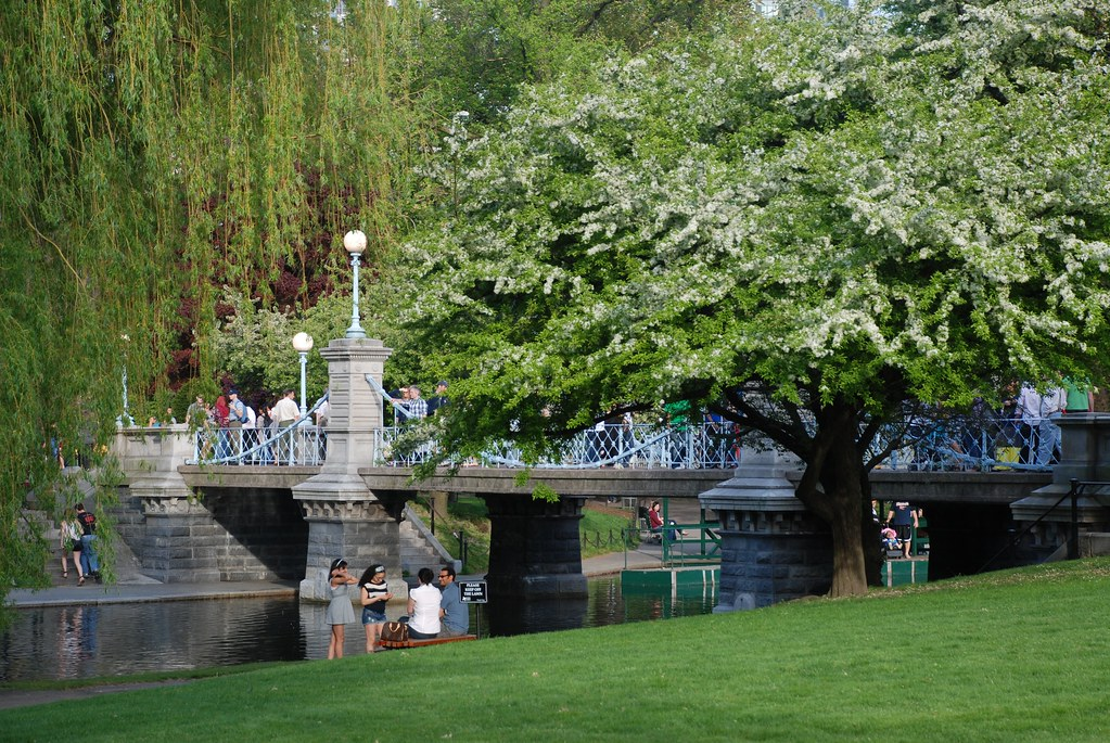 Green Areas In Boston: 5 Perfect Sights to Enjoy by Car