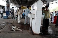 [India] アグラからベナレスに電車で向かう   by kimama_labo