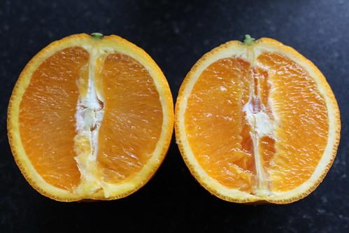 Orange cut in half | by Uretopia