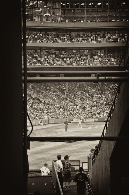 Glance into the Ballpark