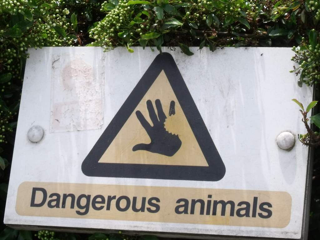 0b0a73f11 London Zoo - Dangerous animals - sign | Warning signs in the… | Flickr