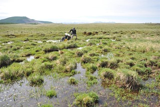 Wading through yet more marshland | by tomsbiketrip.com