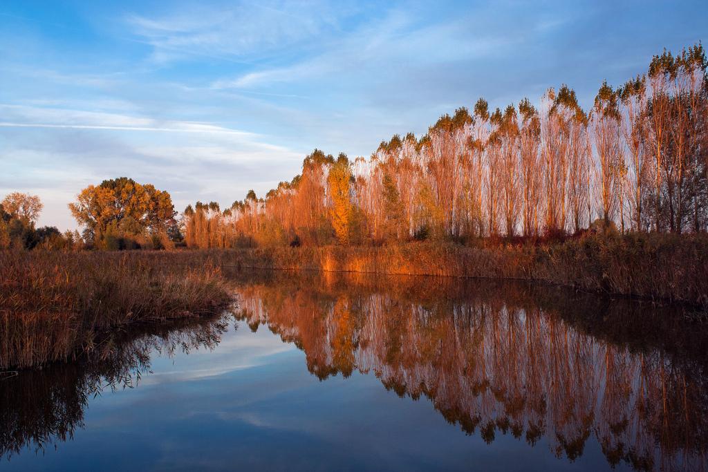 Autumn colors by kaibara87