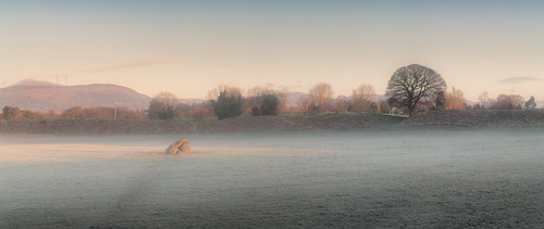 grass rock color winter mist frost colour sun tree giantsring stone still ancient ruin dolmen light sunrise