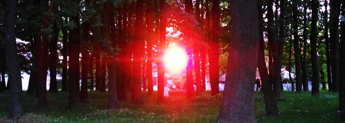 park trees sunset sundown sun red kruseva krusevac srbija serbia