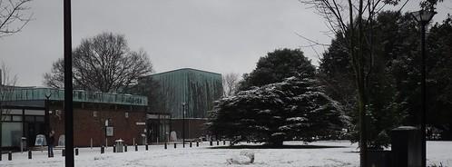 University in the Snow