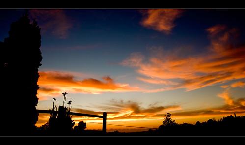 morning red sky orange flower colour sunrise southafrica early durban kzn
