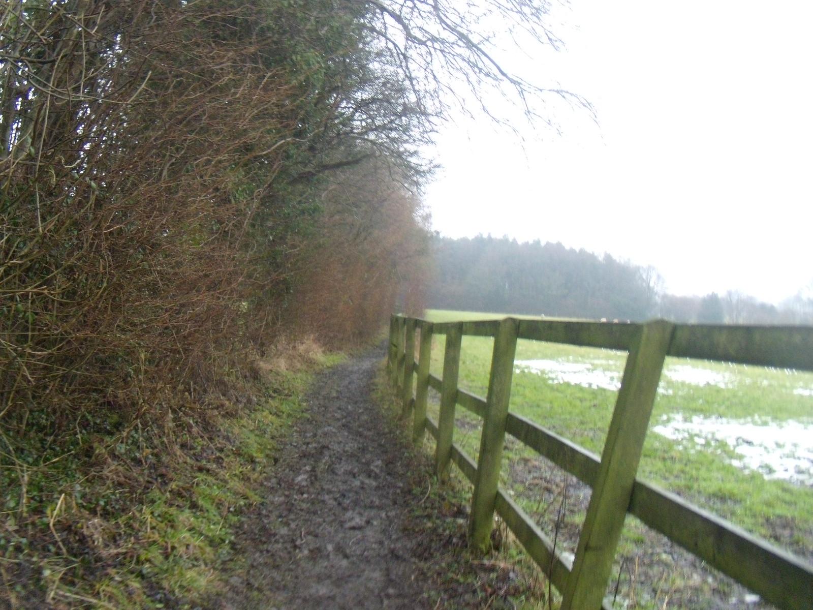 Path to Ladies Wood DSCN8653 Chorleywood to Chesham