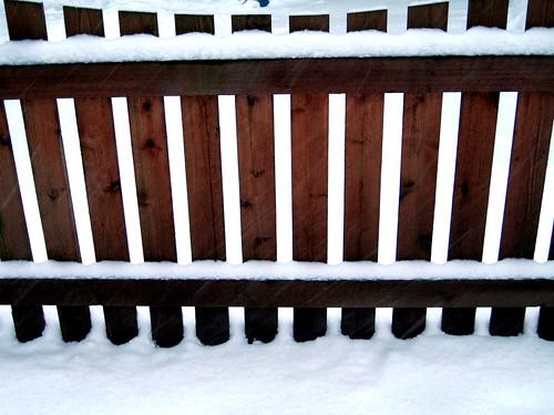 fence   by DangerPup