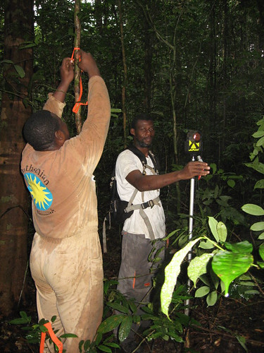 Sat, 10/17/2009 - 04:09 - Tobi Elie, Technician, Smithsonian Institution National Zoological Park.; Henry, Shell Gabon, Topographic Technician. Credit: Gorky Villa.