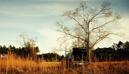 field rye panamacity