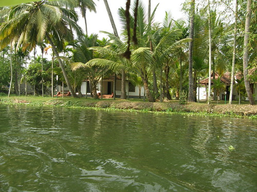 Green Kerala | by Balaji Photography : 7.0 Million views