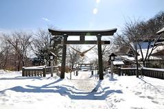 Nasu Kogen - Winter 14   by nekoguchi