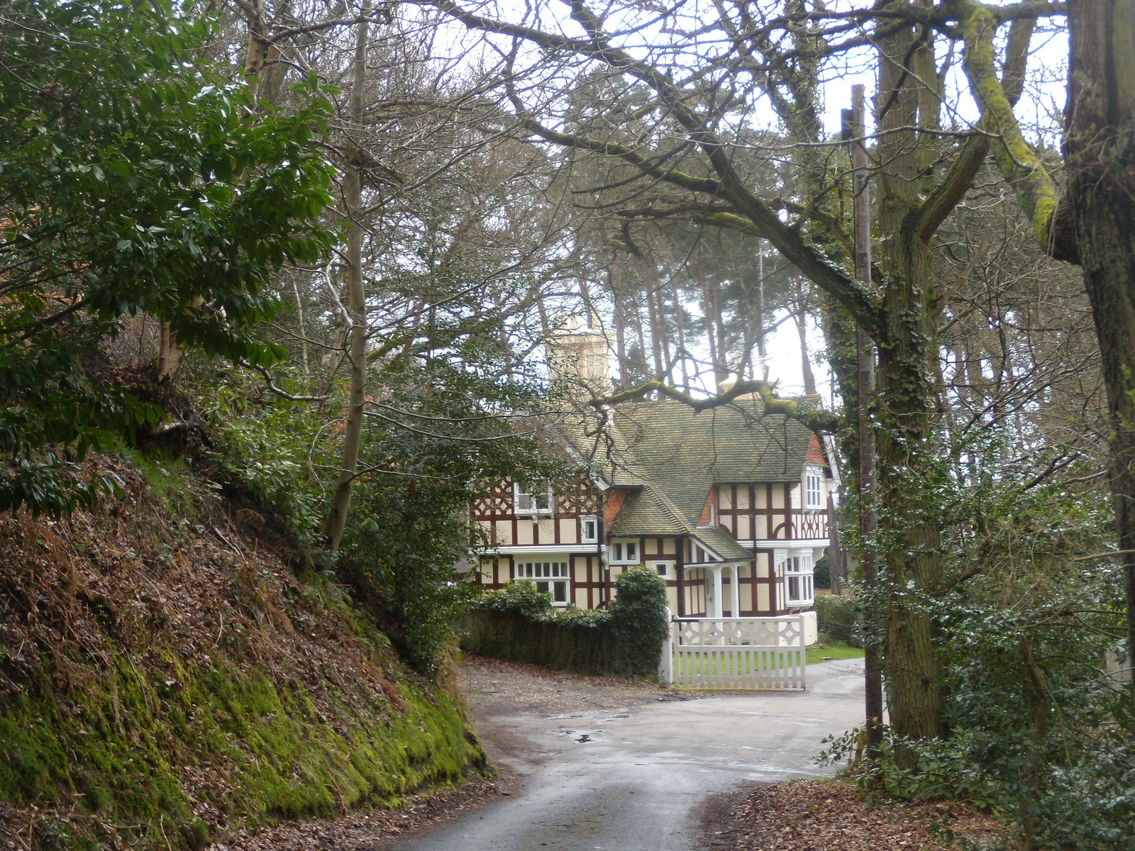 Quaint House Farnham Circular