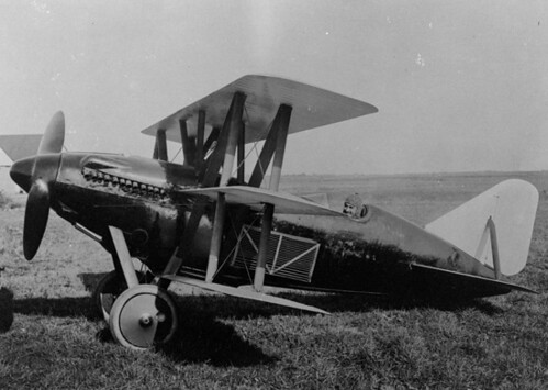 Curtiss : Model 22 : Cactus Kitten