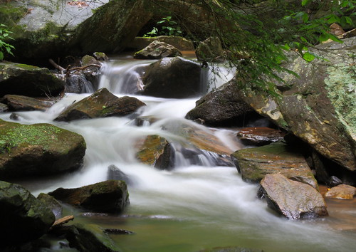 longexposure white water creek nc moss rocks stream northcarolina flowing cascade naturephotography polkcounty mosscovered pearsonsfalls davidhopkinsphotography ncpedia