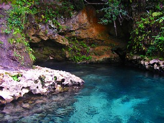 Emerald Spring: Econfina Creek Clearwater Canoe Trail | by Phil's 1stPix