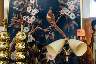 A Pleasant Pheasant | by Orin Zebest